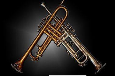 D-examen trompet Pim en Tom van Helvoort